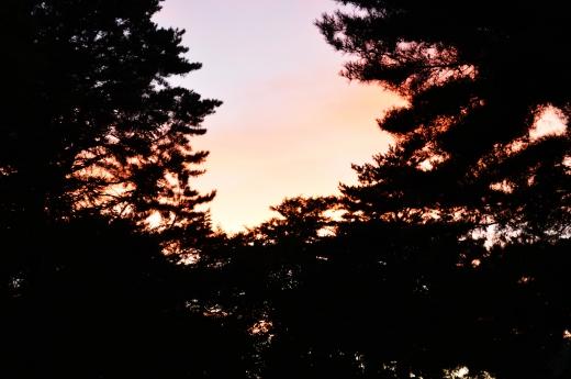 夕暮れ時の風景の写真素材01