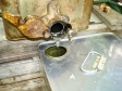 蜂蜜採取の写真素材02