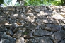 石垣の写真素材02