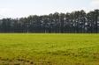 広大な農地の写真素材01