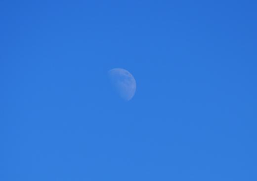 真昼の月の写真素材01