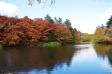 軽井沢・雲場池と紅葉の写真素材01