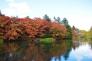 軽井沢・雲場池と紅葉の写真素材03
