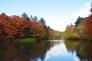 軽井沢・雲場池と紅葉の写真素材04