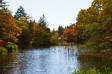 軽井沢・雲場池と紅葉の写真素材06