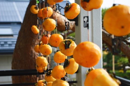 干し柿の写真素材01