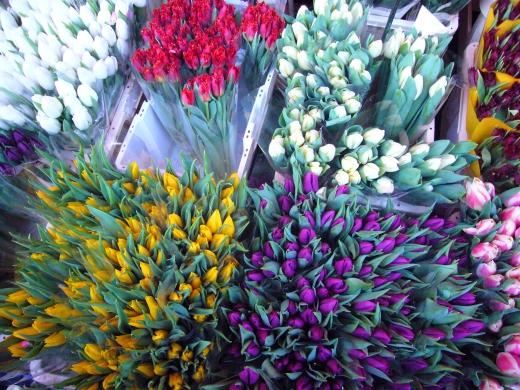 イギリスの花市場の写真素材02