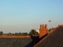 イギリスの屋根の写真素材