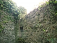 イギリスの石垣とツタの写真素材03