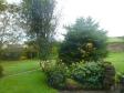 イギリスの庭の写真素材01