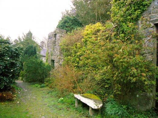 イギリスの庭の写真素材03