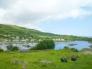 スコットランドの港の写真素材