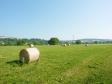 ドイツの田舎景色の写真素材