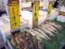 魚市場の写真素材01