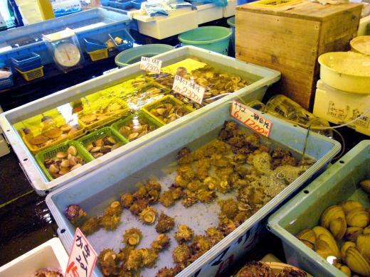 魚市場の写真素材05