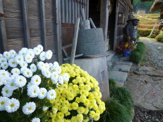 日本の田舎風景の写真素材03