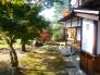 日本庭園の写真素材02