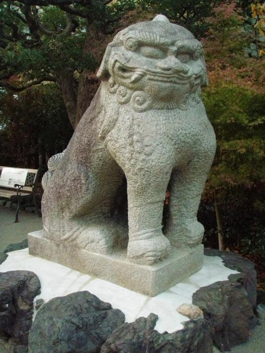 狛犬の写真素材