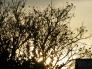 夕日の写真素材03
