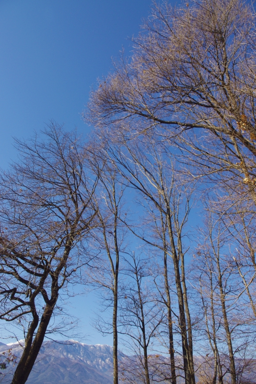 薄っすら雪の積もった山の写真素材01