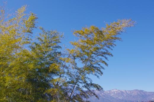 薄っすら雪の積もった山の写真素材05