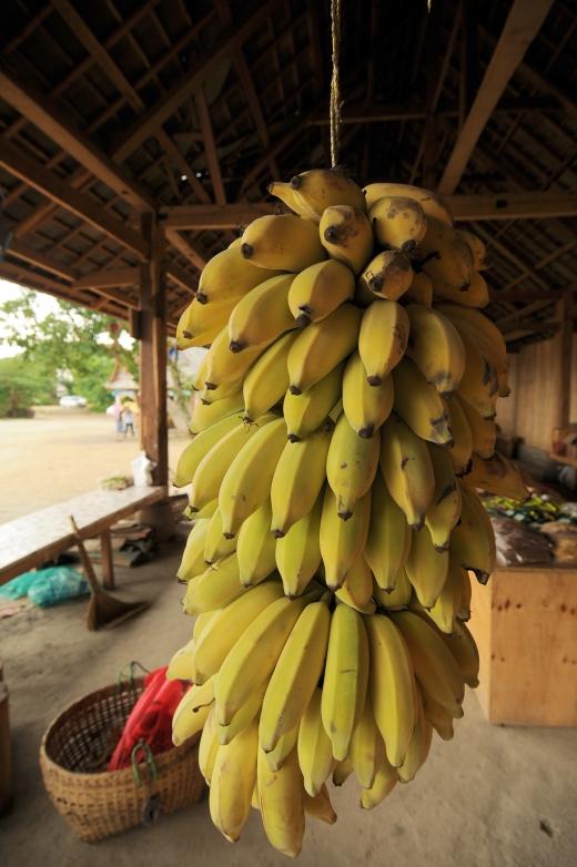 バナナの写真素材