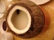 椰子の実の写真素材
