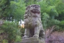 狛犬の写真素材02